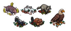 Les six animaux rares