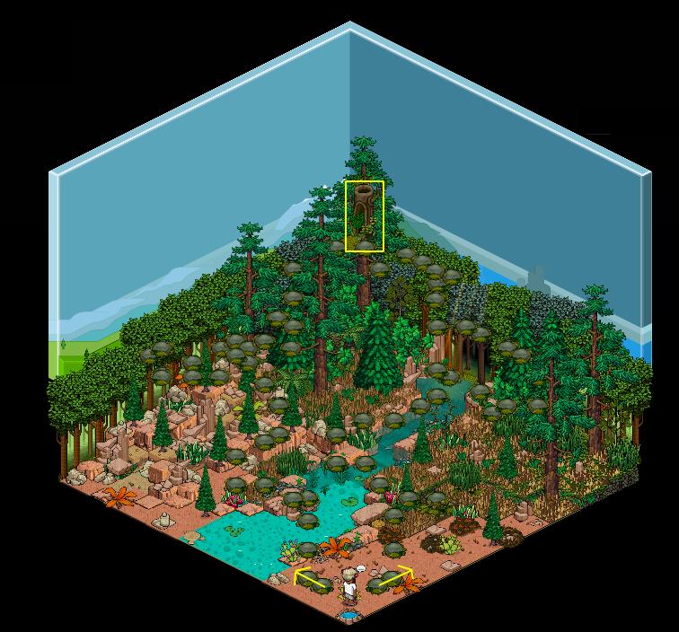 [US] Perdu en forêt 1