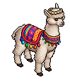 LTD Grace l'Alpaca
