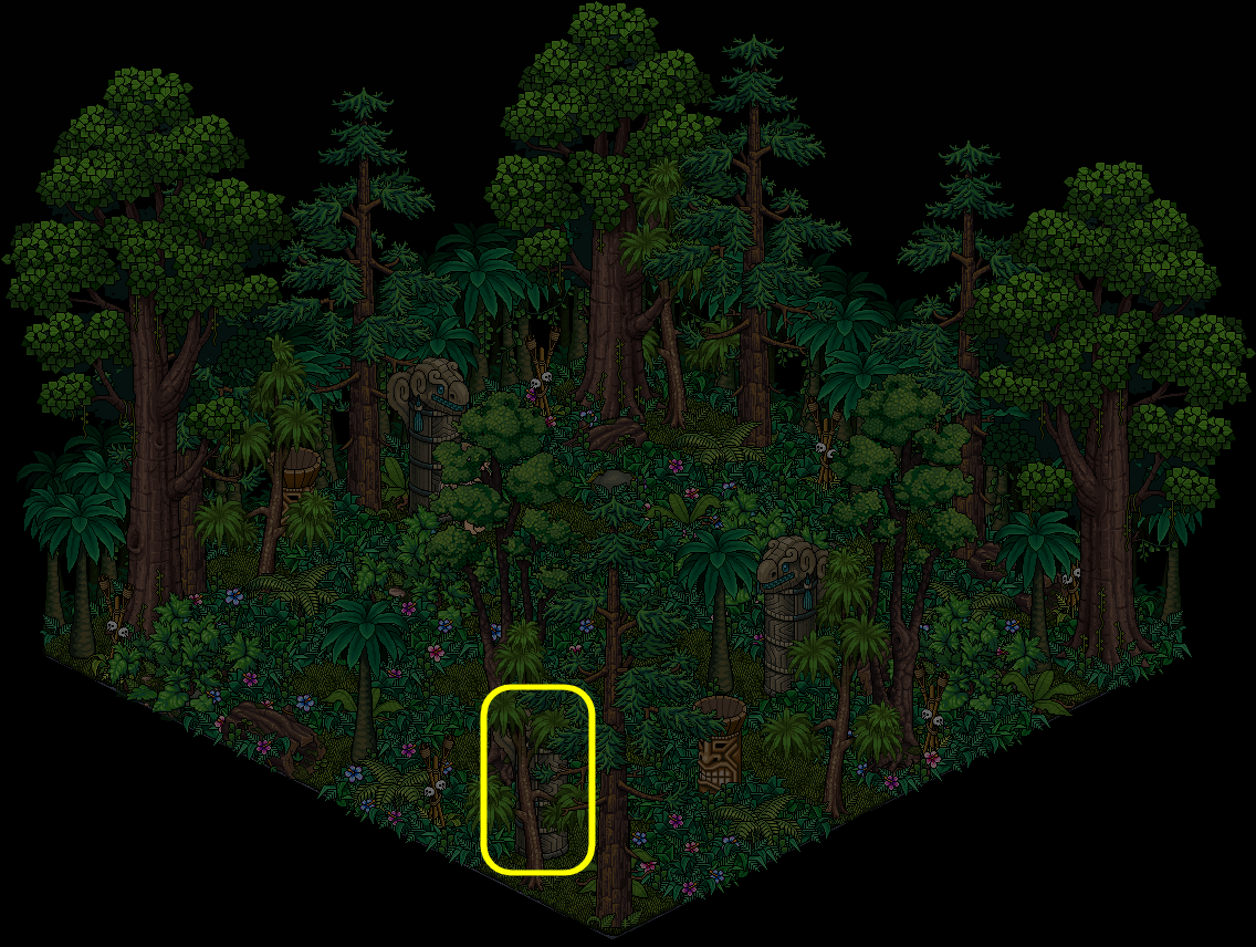 2.2 - Forêt profonde de Tiki Tuha 3