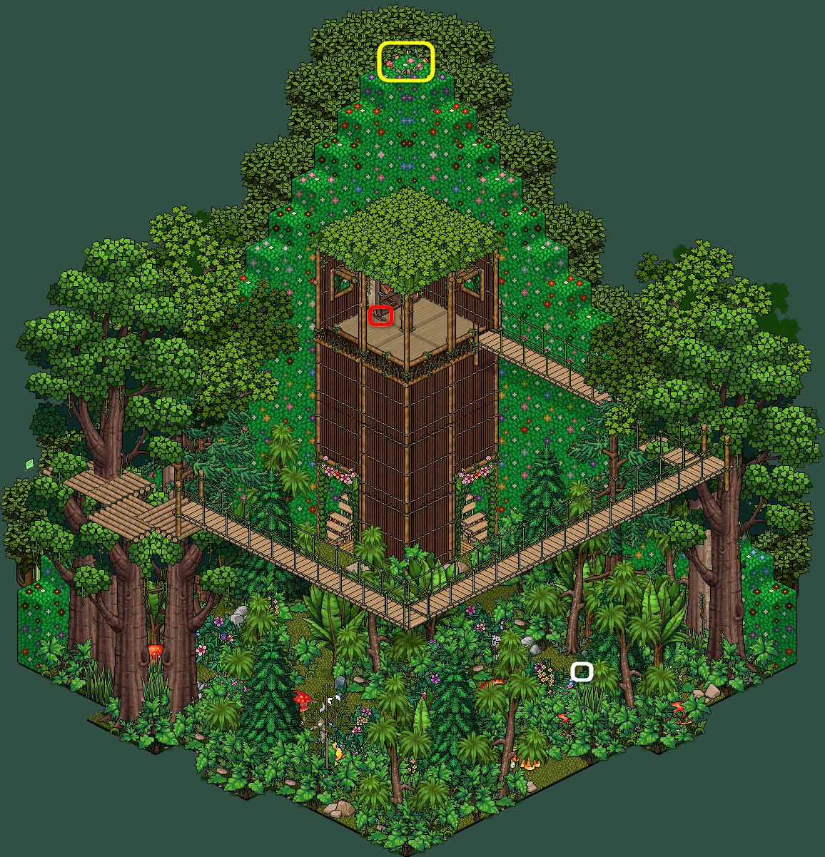 1.1 - Exploration de la forêt