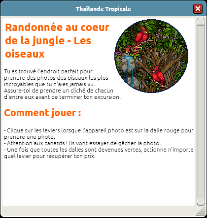 Randonnée au coeur de la jungle 5