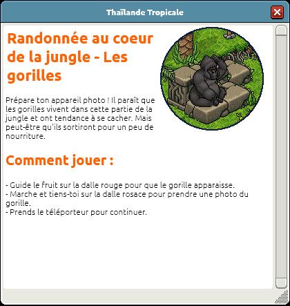Randonnée au coeur de la jungle 2